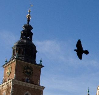 Besuchen Polen